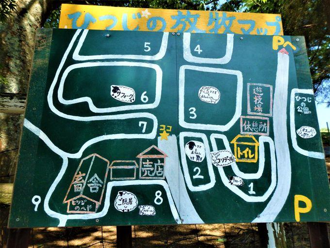 名阪国道・神野口インターチェンジからすぐ!神野山の中腹にある「めえめえ牧場」