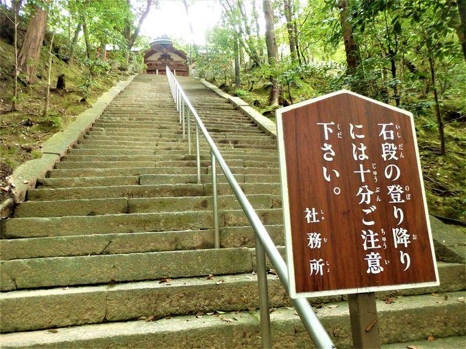 ここから登ろう!ふもとにある下拝殿