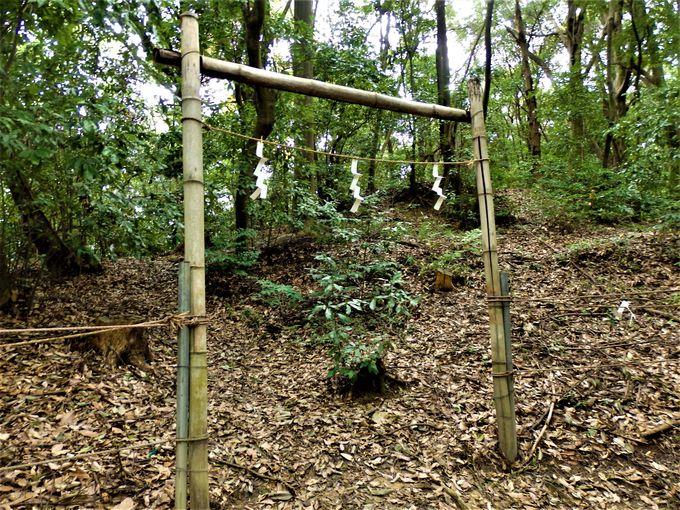 古代の痕跡がこんなところに!山頂付近に見られる美具久留御魂神社裏山古墳群