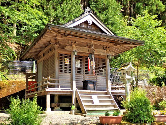 近畿地方では貴重!円空仏を群像で安置する栃尾観音堂