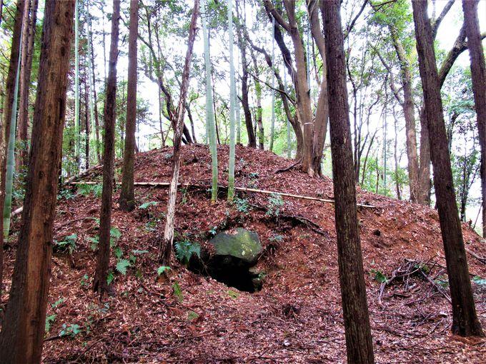 あわせて見学しよう!赤坂天王山古墳に付随する古墳群