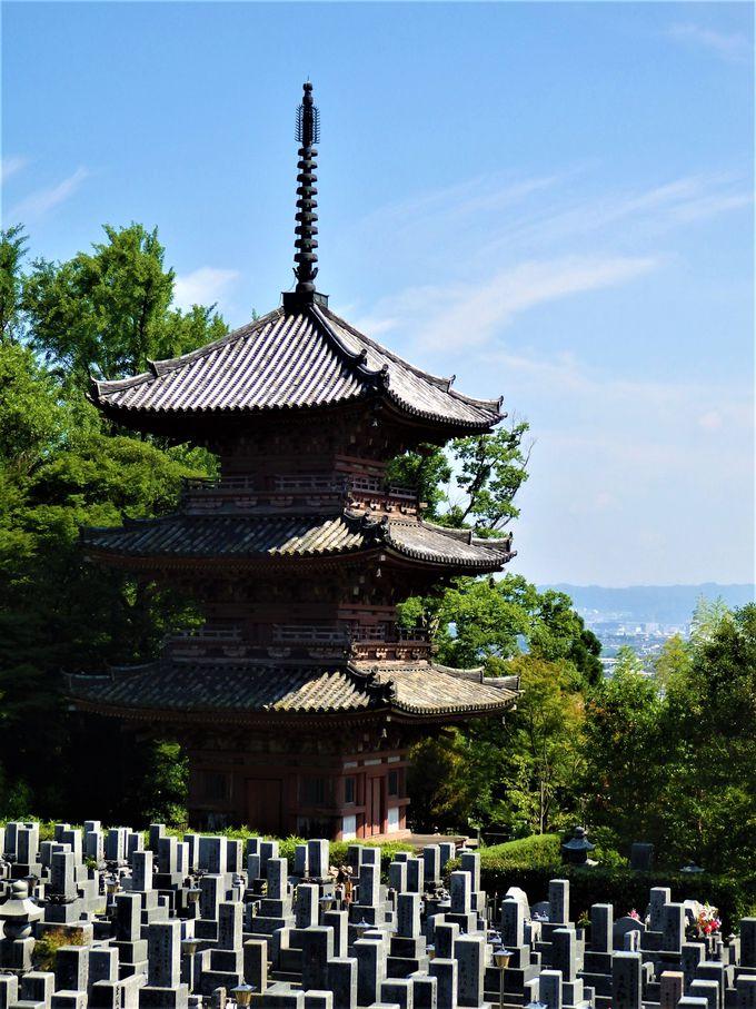 貴重な文化財がたくさん!閻魔堂と三重塔
