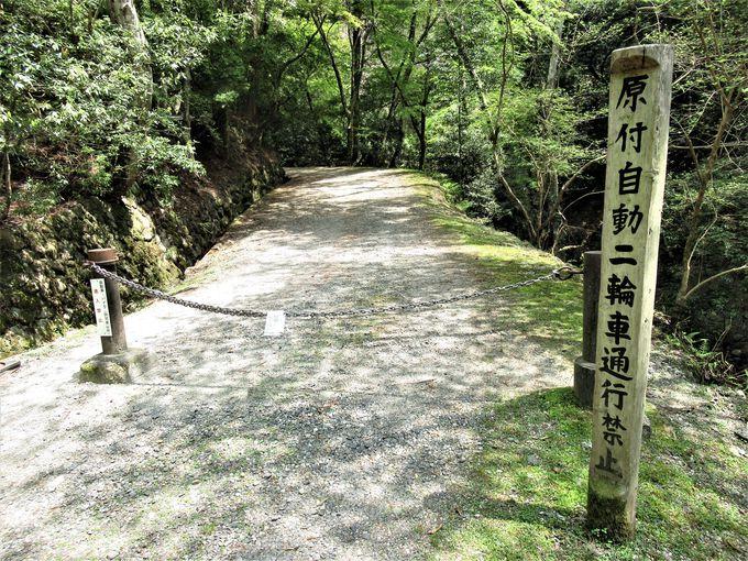 春日山をぬうようにして設けられた春日山遊歩道