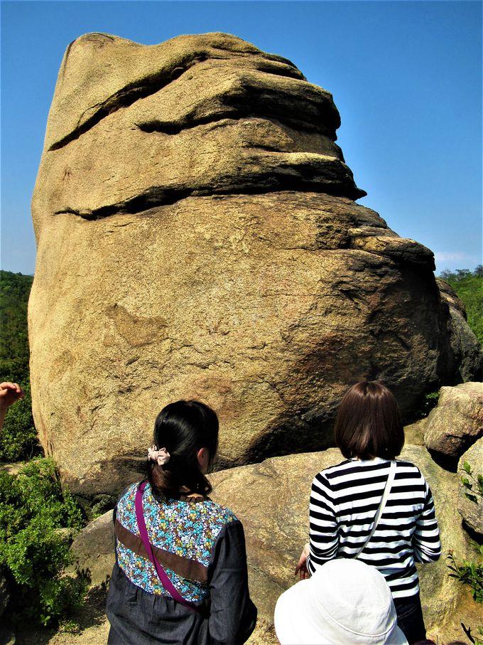 謎の人面岩が!?ちょっと不気味な「ニコニコ岩」