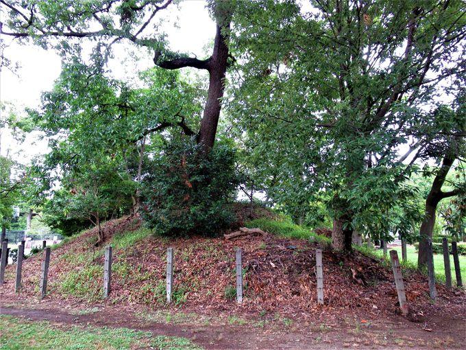 見所いっぱい!園内に点在する古墳の数々