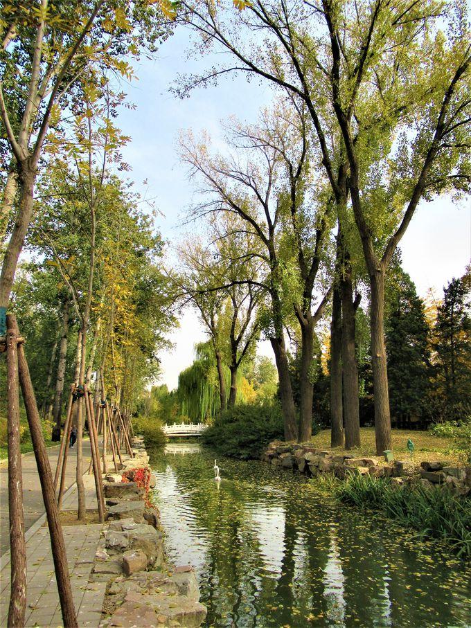 池や水路が広がる広大な園内