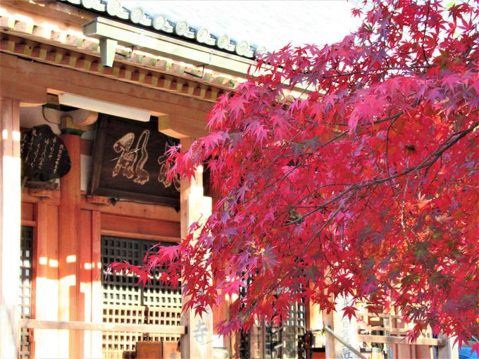 役小角の開基による和泉市の古刹「松尾寺」