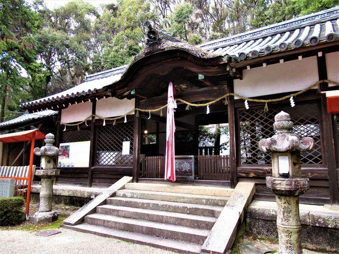 茶筌の考案者・宗砌ゆかりの高山八幡宮
