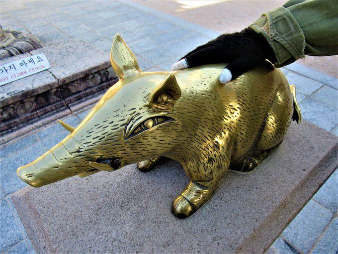 触って運気アップを!「金の豚」の置かれた極楽殿