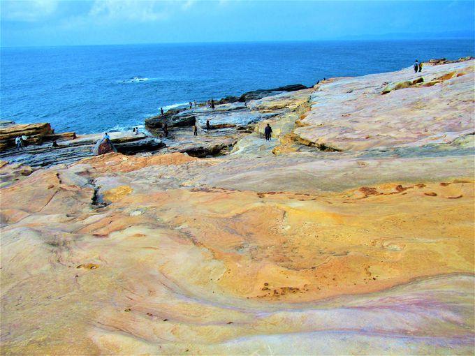 太平洋に突き出した広大な海岸段丘!「千畳敷」