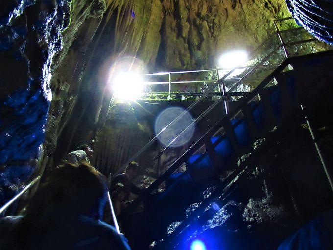 高低差90メートル!直線型の「井倉洞」
