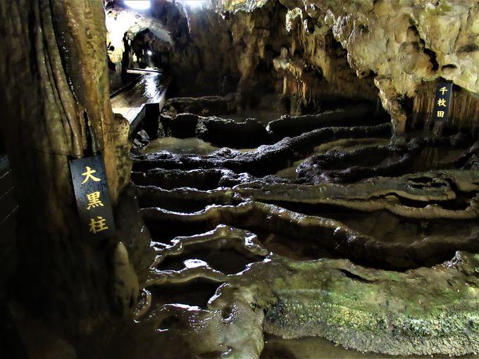 ライトアップされた地底湖や日本有数のリムストーン