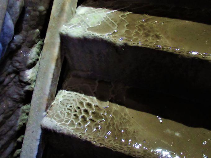 いたるところで噴出する地下水