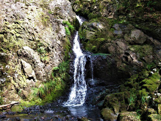 境内の石造物や「つくばねの滝」