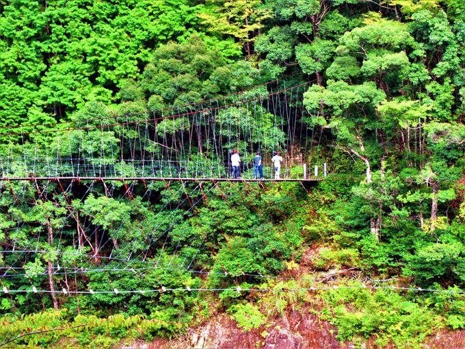 山峡にかかる「柳本橋」と「大野出合橋」