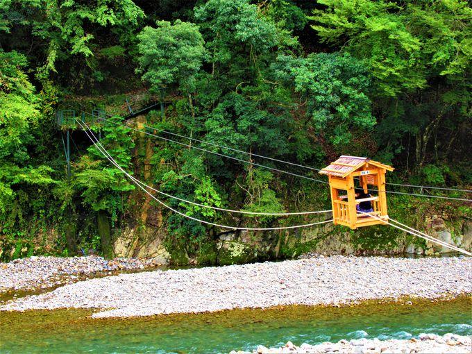 これは何!?「空中の村」の吊り橋と「野猿」