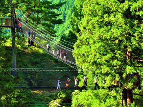奈良県で地域共通クーポンが使える観光スポットまとめ