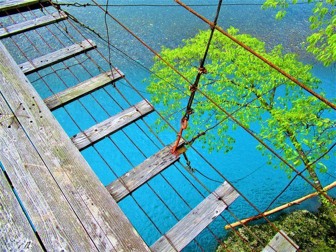 あざやかな色彩の水面も必見!「林橋」