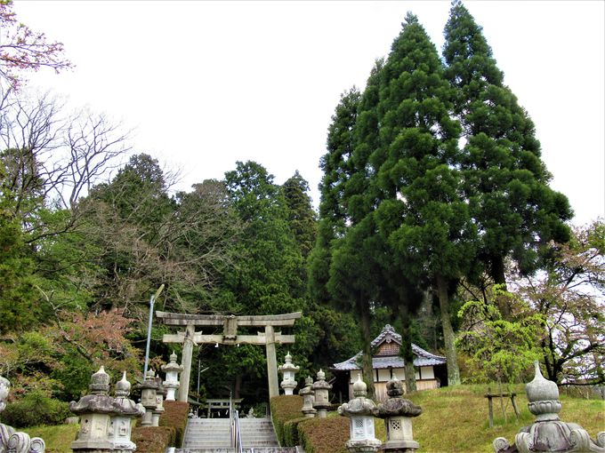 「やすんば」の先にある雄神神社