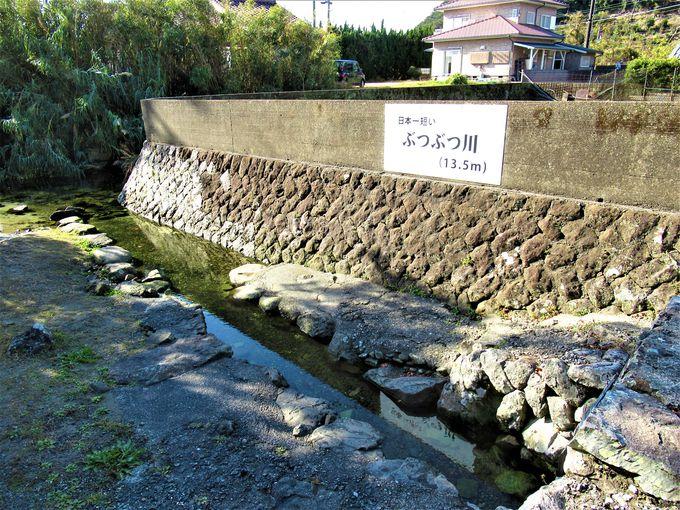 日本一短い川!?粉白地区の「ぶつぶつ川」