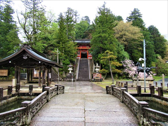 京都府京丹後市峰山町の金刀比羅神社