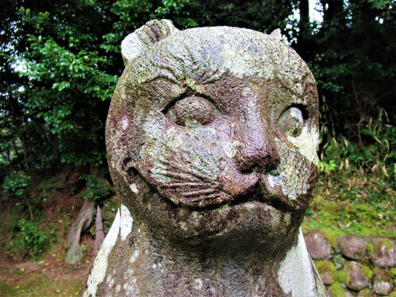 """狛犬じゃないのだニャー!京都峰山町「金刀比羅神社」の""""狛猫"""""""