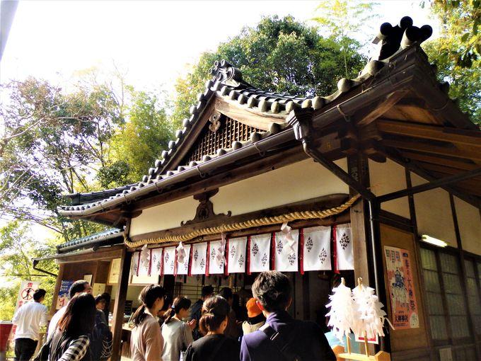 あわせて参拝を!大神神社の境内めぐり