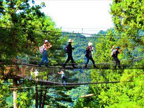 えっ!落ちないの!?空中散歩が楽しい奈良県十津川村「空中の村」