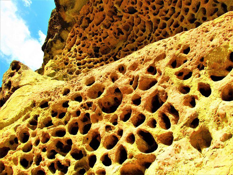 無数の穴はいったい何?国の天然記念物・和歌山県「高池の虫喰岩」