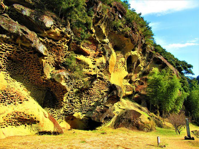 国の天然記念物「高池の虫喰岩」
