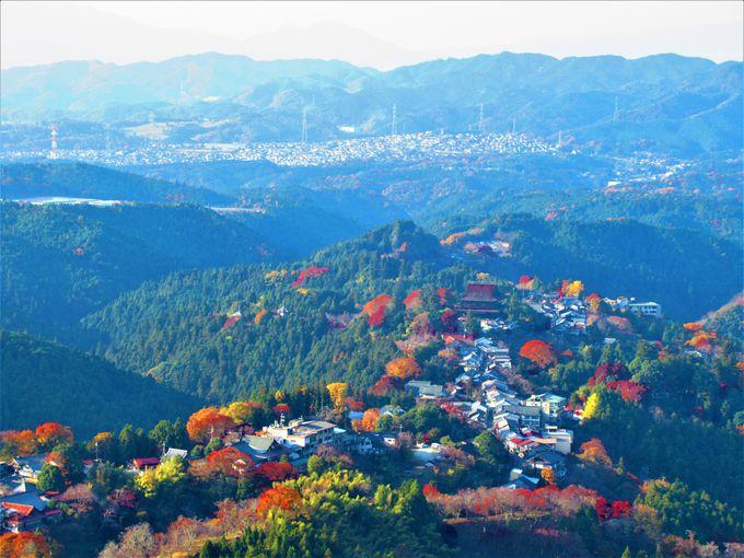 絶景!花矢倉展望台からの眺め