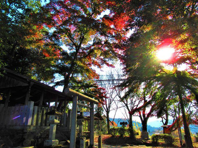 吉野水分神社への道