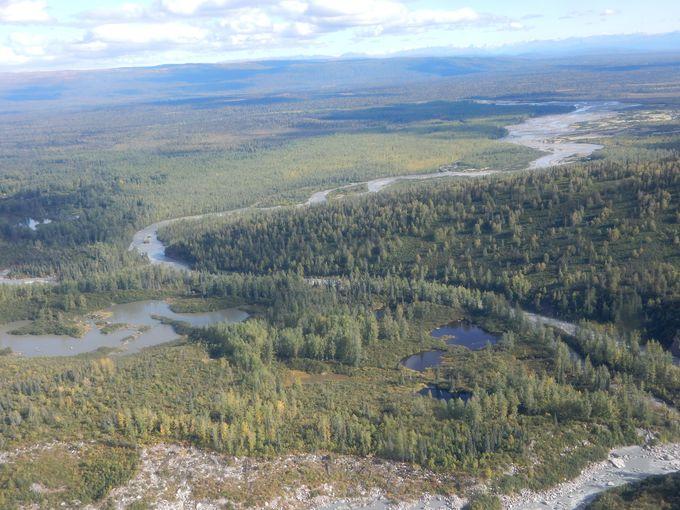 上空から見るアラスカの大平原〜デナリへ