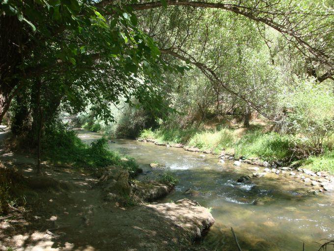 メレンディズ川に沿って歩く