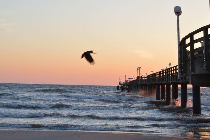 心が洗われるような自分だけの海が見られる贅沢
