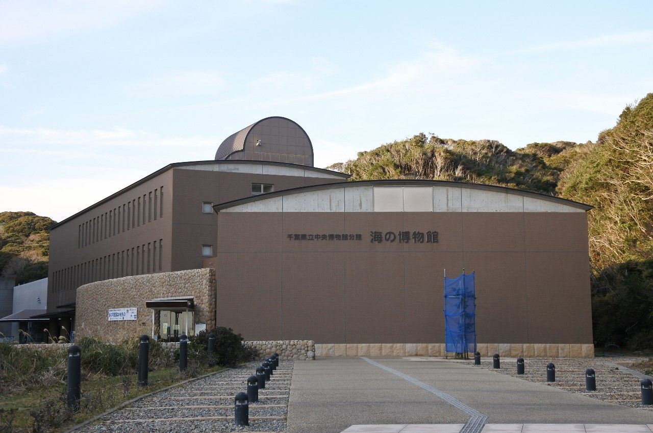 3.千葉県立中央博物館分館 海の博物館