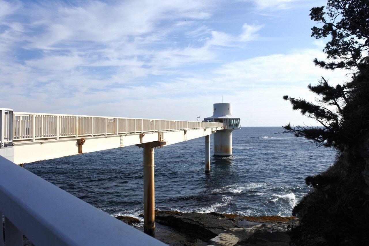 まるで潜水艦!?「海中展望塔」で海を泳ぐ魚を見る