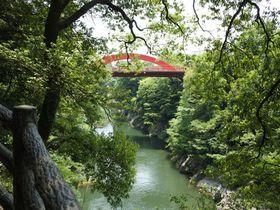 駅からぶらり渓谷散歩!群馬「高津戸峡」の深緑の魅力