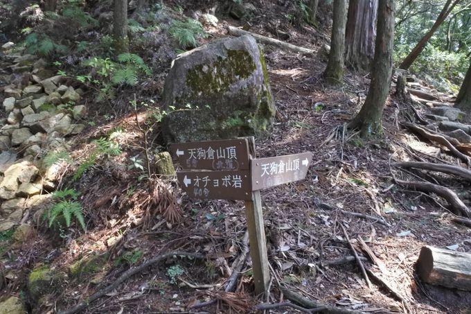 山頂を堪能したら、尾鷲側に峠越えもよし、さらに足を伸ばすもよし