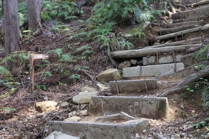 いよいよ天狗倉山へ、急登を行く!