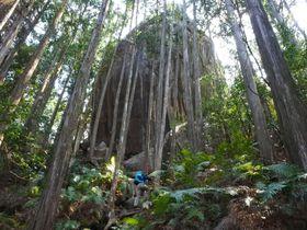 巨岩の上の山頂へ!熊野古道伊勢路の馬越峠から「天狗倉山」に登ろう