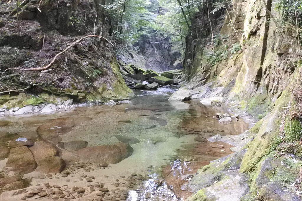 最後の登りの先に、三の滝が待つ