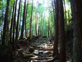 熊野おすすめスポット10選 世界遺産あふれる街で絶景巡り!