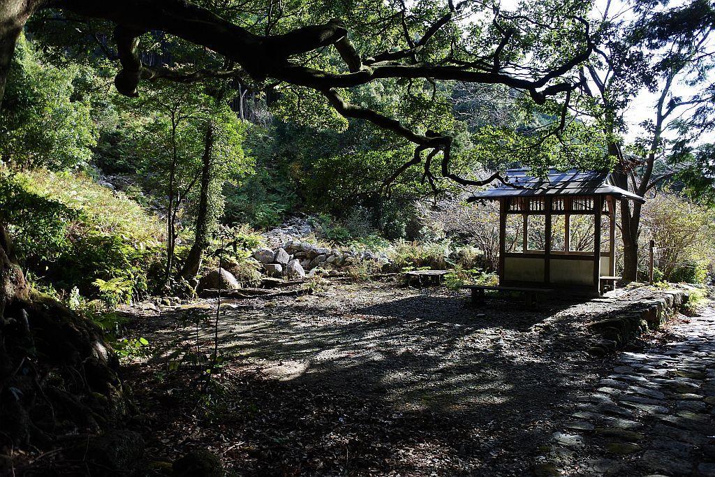 下りは慌てず、熊野古道を感じながらゆっくりと