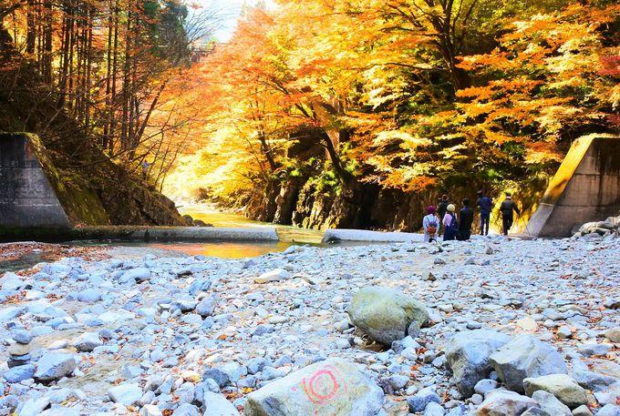 紅葉と清流とアーチ橋の三重奏