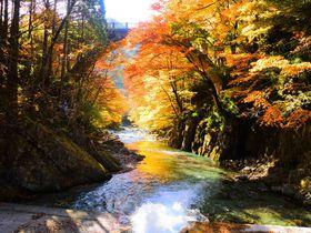 誰かに自慢したくなる!栃木「大芦渓谷」は穴場の紅葉スポット
