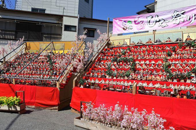 房総の春の使者は3万体のひな人形