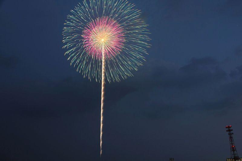 「日本の名玉」はまさに芸術的花火