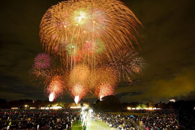 都市公園で開催される花火大会