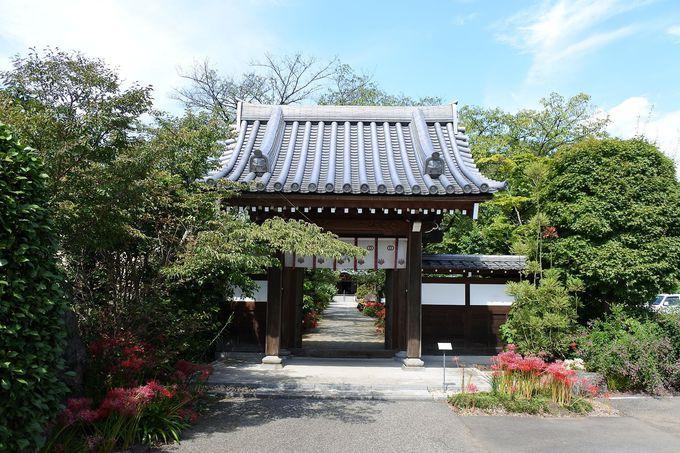 長い歴史を紡ぐ花の寺